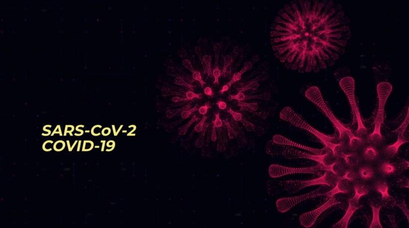 Uued õppefilmid annavad lastele eakohast teavet viirustest ja viirushaigustest
