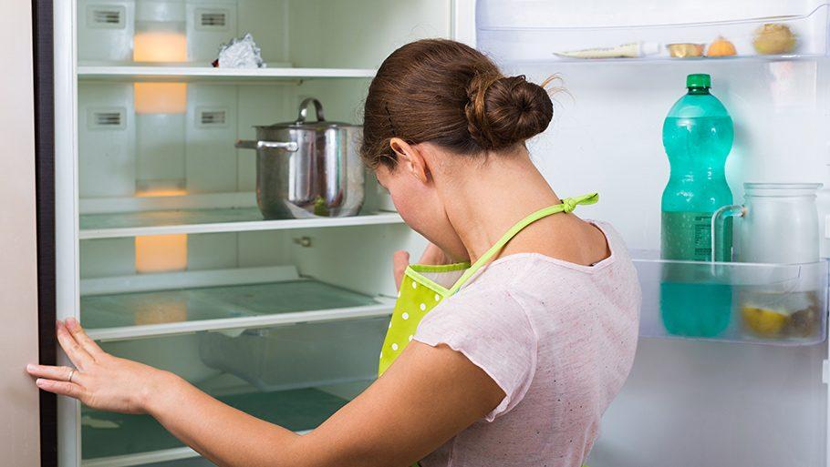 Как избавиться от плесени в холодильнике и убрать запах одни из самых лучших способов